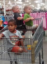 costco cart